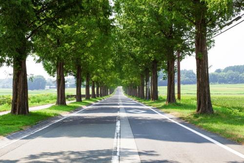 ヴィッツの郊外・幹線道路の燃費は?